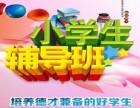 北京六年级语数英一对一补习,小学英语辅导一般多少钱