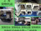 上海宠物托运公司专业宠物托运