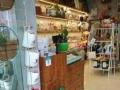 (个人)龙华地铁口旁商业中心商铺低价出租转让Q