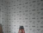 专业贴壁纸、壁布、壁画