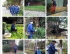 南京栖霞玄武下关事业单位厂区绿化园林养护补种草籽