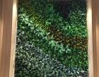 合肥蜀山区仿真植物装饰