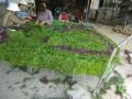枣庄仿真绿雕草雕稻草人艺术产品生产厂家