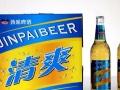 啤酒批发 商超啤酒 夜场啤酒 流通啤酒