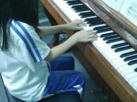 深大附近专业培训钢琴吉他古筝架子鼓
