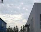 3800平方米全新标准8米高独立厂房出租