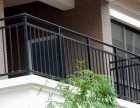 静海县铁艺大门-围栏-锌钢护栏定做厂家安装