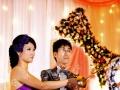 专业婚礼摄像,微电影,宣传片
