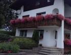 厦门景观 别墅小区酒店阳台露台花园绿植园林花卉植物设计施工