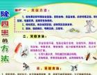 株洲专业灭鼠,灭蟑,灭四害,高效安全