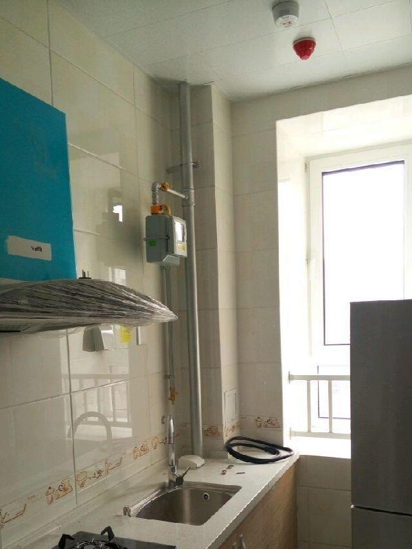 泰山国际金融 1室1厅 42平米 精装修 押一付三