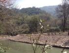 灵田镇正义下山村 土地 1000000平米
