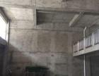 澧南 写字楼 1650平米