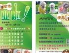 市政新区精晶宠物美容店周年庆活动