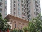 西区邮局后面,骏华庭6楼,电梯公寓,租950元