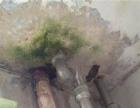 乐山厨卫屋面外墙等防水堵漏修换管道龙头疏通