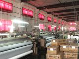 服装面料厂家现货批发宽幅春亚纺 供应化纤面料 磨毛春亚纺布料