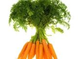 盆栽蔬菜种子 三红八寸参 胡萝卜种子 家