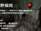 """史上较恐怖医院主题真人鬼屋""""川野病院""""空降抚州啦!"""