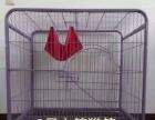 全新猫笼价格优惠