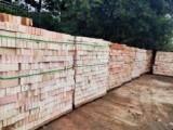 浦东 码头直销 黄砂 水泥 水泥砖 红砖销售