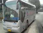 客车)嘉兴到淄博)大巴汽车(发车时间表)几个小时到+票价多少