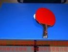 多功能乒乓球训练健身器