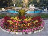 北京崇文别墅庭院绿化养护