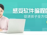 长沙专业编程培训 基础软件测试培训入门