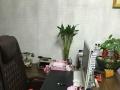 鑫森广场办公室出租