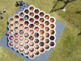 周口蜂窝迷宫蜂巢迷宫现货出售出租