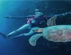 深圳龙岗区潜水考证机构:潜水时关于应对水流的一些探讨欢迎亲