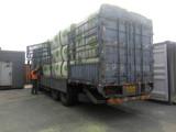 OGO美国进口苜蓿草,从收割到海运全程监控 品质保证