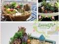 优加手作植物DIY,小本创业加盟新选择