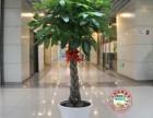 上海鲜花绿植商场办公室绿植租赁租摆 园林设置施工养