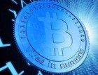 数字货币化是大势所趋山寨币交易平台搭建制作现成虚拟币系
