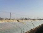(聚土网推荐)咸阳市杨凌区30亩设施农用地低价转让