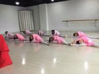 嘉兴多校舞蹈春季班 暑期班报名开始 安迪舞蹈