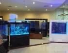 中山水族鱼缸-哪里有鱼缸直销-珠海市香洲龙鱼世家水族馆