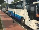 海淀豪华大巴车出租北京周边旅游大巴租车,婚车