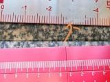 标尺,铝标尺,机床标尺刻度尺个性定制