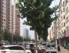 汉飞城市花园南边临街纯一层商铺年租金5万4..