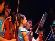 忻州小提琴培训中心