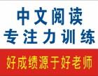 周浦中文阅读 专注力训练