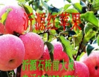 代收山东沂源红富士苹果