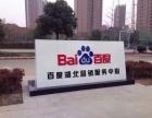 武汉百度信息流 百度推广武汉网站建设 武汉企业代办