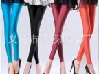2015新款韩版糖果色荧光裤高弹力牛奶丝女式塑身显瘦薄款打底裤潮