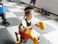 泰拳,拳击,散打免费课程体验预约中