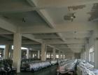凤凰园贵族阳光 仓库 805平米,带300平方隔楼,使