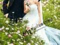 泰安最大最好的婚拍基地是哪 泰山花海摩玛梦想城你的最佳选择